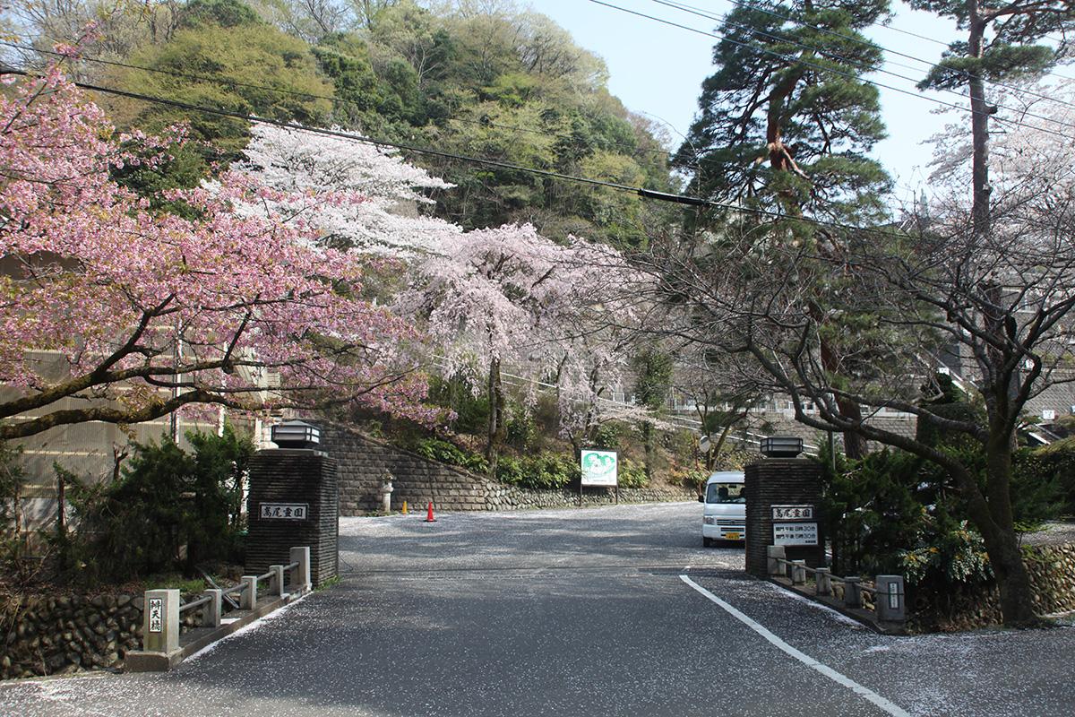 kiyoshi-08
