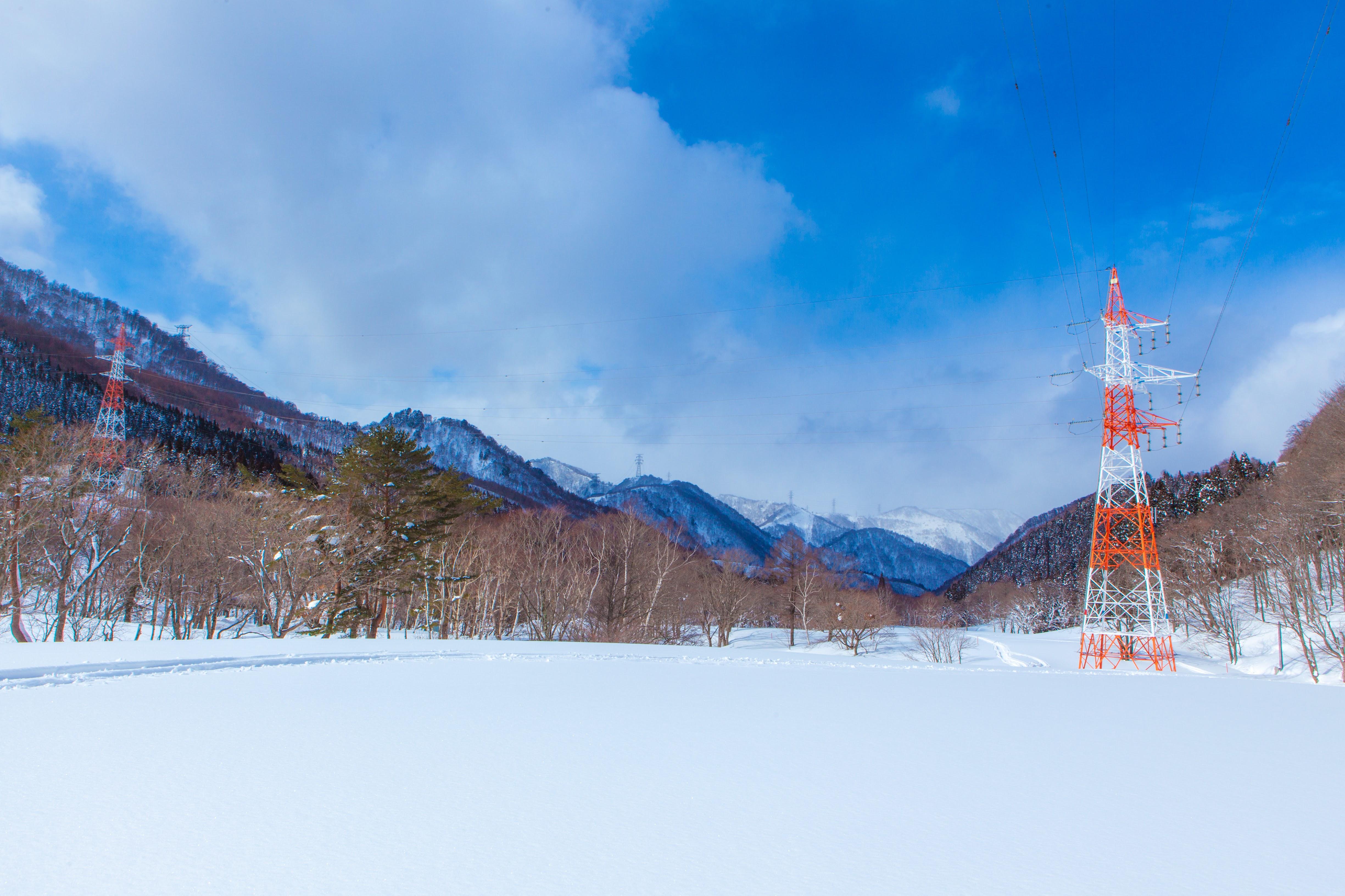 雪のグリーン・ステージ | Photo by アリモトシンヤ